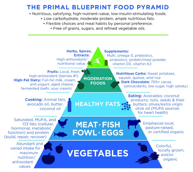 what is the primal diet?