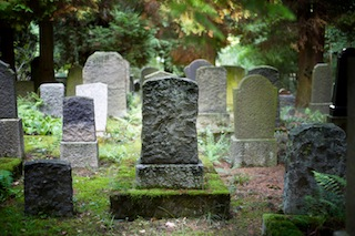 What can our Primal fear of death teach us? | Mark's Daily Apple