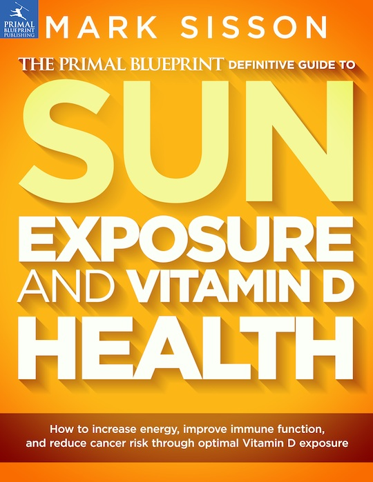 vitamind_ebook_cover_540