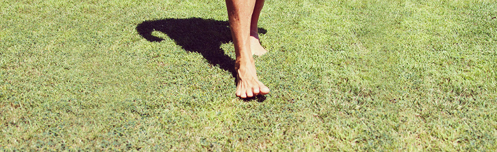 MDA3_banner_feet_valencia