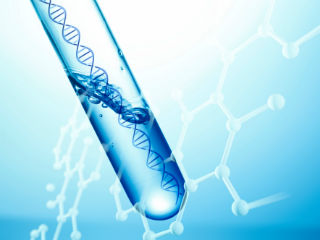 CRISPR in line
