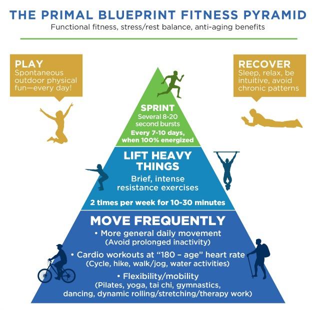 Introducing the new primal blueprint marks daily apple 2016 fitness pyramid malvernweather Images