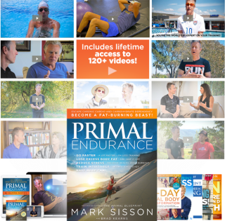 Primal_Endurance_Inline
