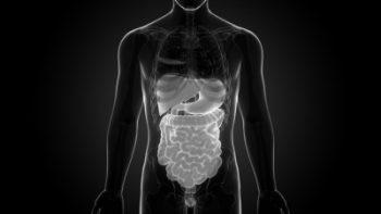 400_gall-bladder